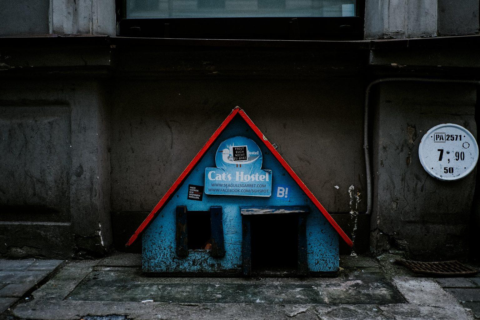 Katzenhotel in Riga
